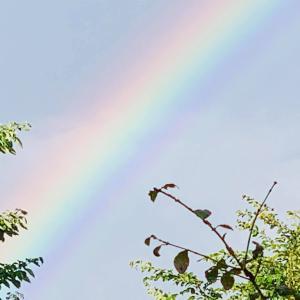 虹がたった♡
