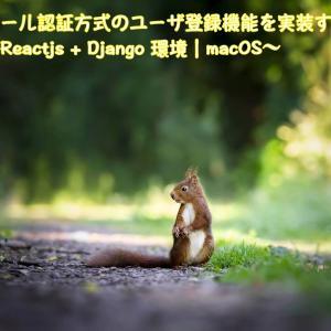 メール認証方式のユーザ登録機能を実装する〜Reactjs + Django 環境|macOS〜