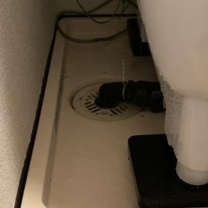 【悲報】洗濯機が壊れるけり。