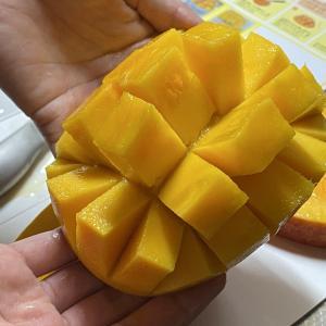 美味しい宮古島産マンゴーをいただきました!