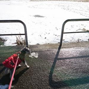 水道管が破裂するほど寒かったのねの巻