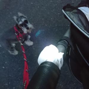 お散歩日記とグラノーラクッキー~紙コップとワックスシートでラッピング