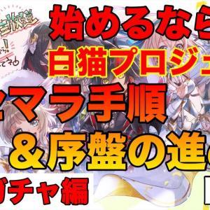 【白猫】始めるなら周年イベントが始まる今が最適! リセマラのやり方とその後の初心者ガイド【No 2 武器ガチャ編】