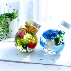【化粧品の基礎知識】植物性オイルと脂肪酸、特徴と役割
