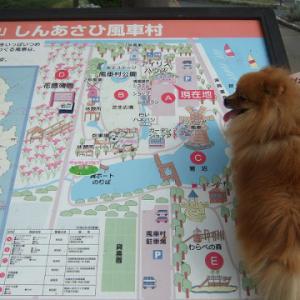 道の駅 しんあさひ町風車村  2007年の写真あり