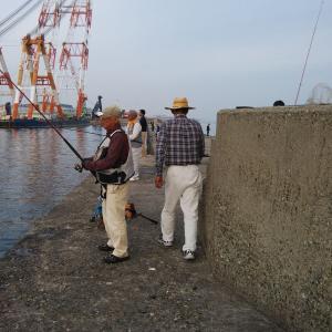 播磨新島調査2