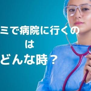 シラミを見つけたら病院に行くべき?シラミで病院にかかる必要があるのはどんな時か