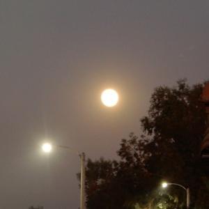 今夜は満月●