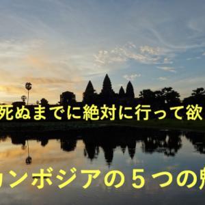 【カンボジアの5つの魅力】僕が何回も行っている理由/旅行/ボランティア