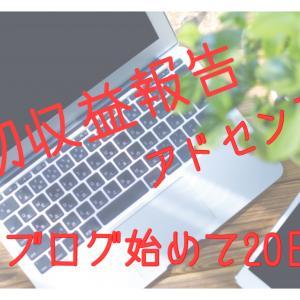 ブログ1ヶ月目!平凡PVと収益報告!6/10スタートからの成果