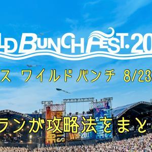 夏フェス!WILD BUNCH FEST.【完全攻略】