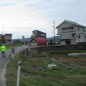 朝散歩 10.24