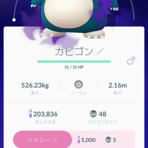 シャドウ カビゴン 本日のポケGo