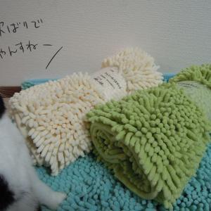 【うさぎ絵日記】ソアホック対策 スースーマット② (マイクロファイバーマット)【ウサギ イラスト】