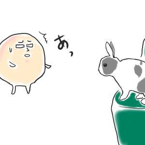 【うさぎ絵日記】長十朗 カリカリを求めて【うさぎ イラスト】