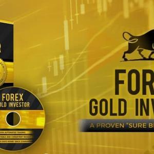 【洗練】Forex GOLD Investor[フォレックスゴールドインベスター]を検証してレビュー