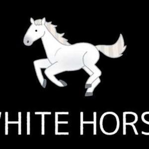 ダーツの「ホワイトホース」とは?語源やホワイトホースの出し方のコツについて