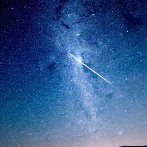 夢のなかでも星読みタイム。