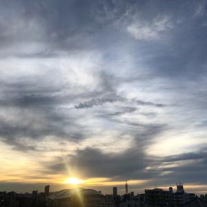太陽が獅子座へ入る前に。