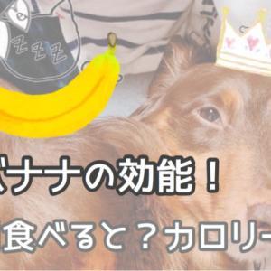 バナナの効能!毎日食べると?カロリーは?