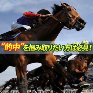 阪神ジャンプSはコレから勝負!