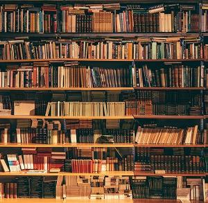 本が多すぎてどれが良いかわからない!!本の読み方を本で学ぶ「レバレッジ・リーディング」