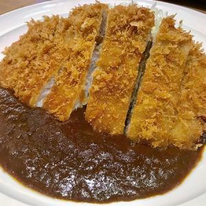 美味いカレーが食べたくてNo.1 【 空港のカツカレー  成田  】