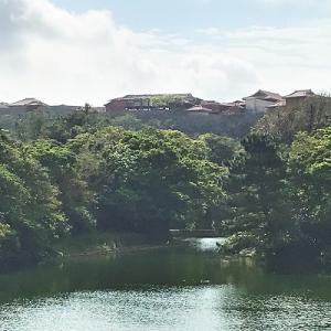 2020春 沖縄小旅アーカイブ 【  あやぐ食堂 首里 】