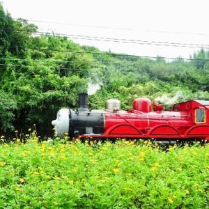 赤い蒸気機関車 【 】