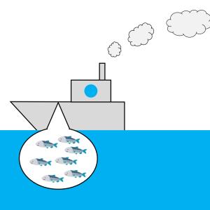 【夏休み企画】シラス漁見学ツアー in 江田島市に参加してきました!