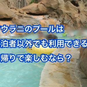 アウラニのプールは宿泊者以外のビジターの利用は?日帰り楽しみ法