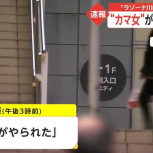 鎌(カマ)女がラゾーナ川崎プラザ内で殺人未遂事件!犯行動機は一体何だったのか?