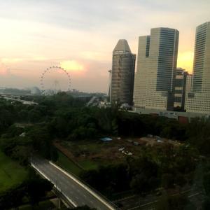 シンガポールのカンファレンスご報告