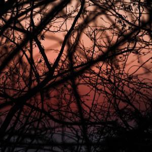 305歩 夕日と戯れる 紅い光に包まれて#1 編