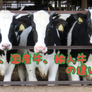 和牛、国産牛、輸入牛の違いは?