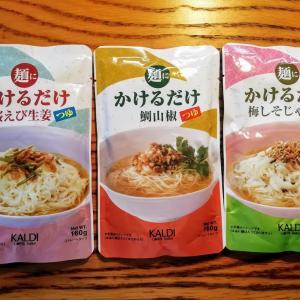 【調理不要】夏キャンプにオススメの「素」を使ったさっぱりキャンプ飯【実食レポ】