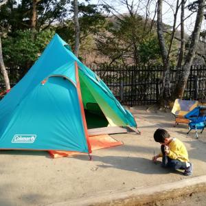 【清和県民の森キャンプ場】直前予約でも充分楽しめる!静かに自然を楽しむファミリーキャンプ【前編】