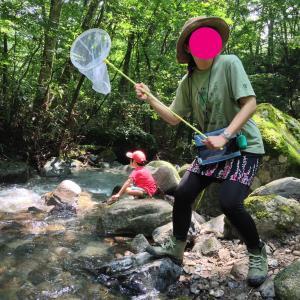 【一の瀬高原キャンプ場・レポ②】トンボ捕り&温泉を楽しむ。サプライズもアリ!