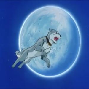 拝啓、月が綺麗な夜です。