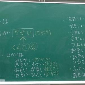 本日の授業 1年生算数 「ひろさくらべ~「どちらが◯◯」◯に入る言葉はどんな言葉?~」