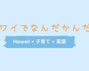 ハワイも終わりです。