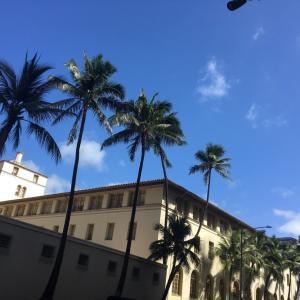 ハワイで感染診断はゼロだが風評被害