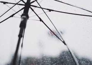 梅雨の日の晩酌のすすめ