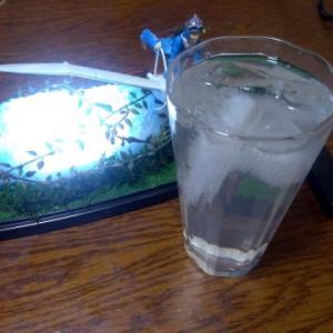 ☆ オウム抜け殻~スイッチボックス接続で・・・酒・・・!!!