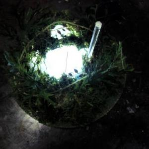 ☆ 20π園丁LEDジオラマ制作・・・フラップター使用!