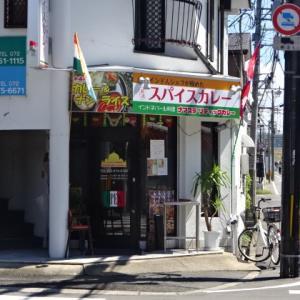 【高槻市 ナマステ・リティックカレー】