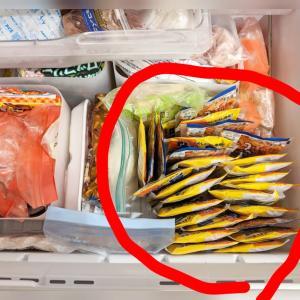 【楽天】便利すぎて神だった冷凍庫の常備品