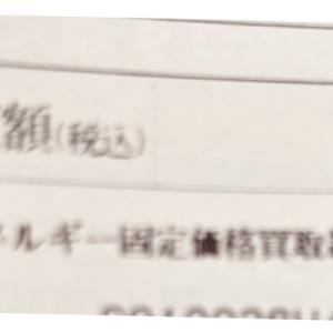 【実質451円】毎年驚く夏の電気代