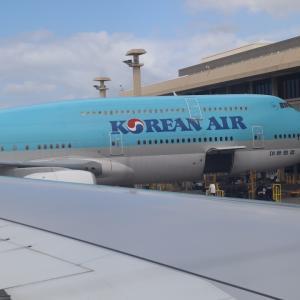 大韓航空の機内でパンが出たとき