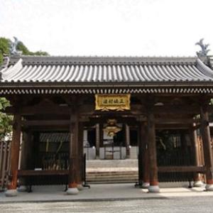 麒麟がくる28話あらすじ【ネタバレ】上洛を果たし本圀寺で襲撃に遭う
